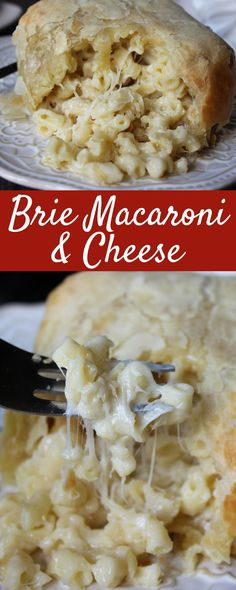 They're buttery, flaky pillows of warm gooey cheese goodness. The mac and cheese itself is rich and decadent.