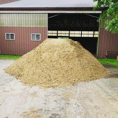 Happiness is new sand for the arena!