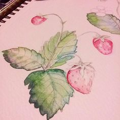 #artforjoysake with Kristy Rice @momental over periscope tonight. Check her out if you haven't yet. She paints a pattern in her #painterlydays watercolouring books and I decided to paint along.  #strawberries #watercolour #watercolor #strawberryillustration #watercolorstrawberry #watercolour #aquarelle #waterblog #botanicalillustration #ilovewatercolor #instaartist #purejoy #artterapy #paintdaily