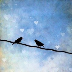 lovers love hearts birds blue sky cute couple two art photo print 8x8 - Love Birds