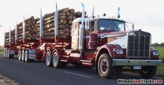 KENWORTH W924 - Murray Langfords with Tabeel B Double Logging Trailers