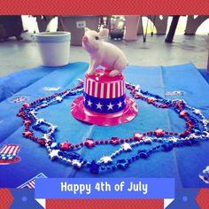 Matilda got patriotic on July 4th.