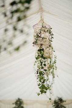 Bird Cage Wedding Decor - Whimsical Wonderland Weddings