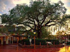 Liberty Square, Magic Kingdom