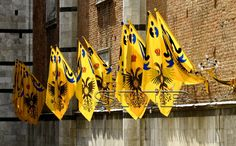 Aquila flags