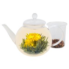 Teabloom Blooming Teapot - Glass Teapot with Infuser - 34 Oz Heat Resistant #Teabloom