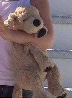 Lost at Italy on 09 Jul. 2016 by ulla: Lost inthe autogrill station campiolo ovest in italy All Is Lost, Lost & Found, Pet Toys, Italy, Teddy Bears, Plane, Europe, Train, Dog