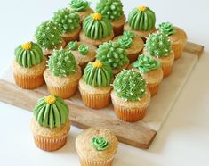 Baker Alana Jones-Mann Dishes On Dessert Inspo and DIY Designs - Cupcakes Cupcakes Succulents, Cactus Cupcakes, Cactus Cake, Cactus Food, Taco Cupcakes, Cupcake Party, Cupcake Cakes, Easy Dessert Bars, Cute Food