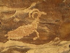 Mountain sheep petroglyph