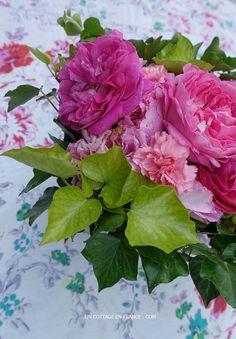 Roses de mai shabby chic, blog shabby chic rustique chic 5