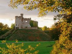 cardiff castle _ wales bc Reece is a misspelled Welsh last name originally Rhys, after the river & it'd be cool to see where my family is from.