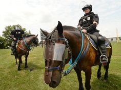 Bethlehem police horses gear up for civil unrest