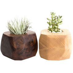 Boyce Studio Geometric Wood Succulent or Tillandsia Planter (250 BRL) ❤ liked on Polyvore featuring home, home decor, floral decor, plants, fillers, decor, flowers, succulent planter, wood home decor and wooden flower planters