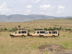 Sightseeing Tours  - Greatest Migration Safari  #SightseeingTours   $6,095.00