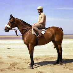 A tribute to the champion Red Rum, who won the Grand National three times and placed second twice. Race Horses, Horse Racing, Rum, Horse Cartoon, Animal Categories, Sport Of Kings, Horse World, Grand National, Thoroughbred