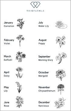 Birth Flower Tattoos, Small Flower Tattoos, Dainty Tattoos, Cute Small Tattoos, Cute Tattoos, Body Art Tattoos, Sleeve Tattoos, Tattoo Ideas Flower, Flower Tattoo Designs