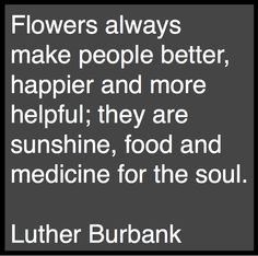 If anyone knew about flowers, it was Luther Burbank. Quotes To Live By, Me Quotes, Great Quotes, Inspirational Quotes, Fleur Design, Love Flowers, Diy Flowers, Flower Bouquets, Flowers Garden