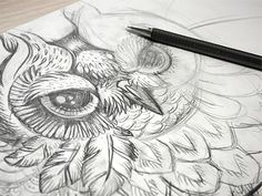 Sketch: Extremely beautiful & detailed owl #sketch #drawing #art