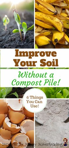 How to Improve Soil Without a Compost Pile - 6 Key Ingredients - Garden Care, Garden Design and Gardening Supplies Organic Vegetables, Growing Vegetables, Organic Herbs, Organic Soil, Grow Organic, Organic Fruit, Growing Tomatoes, Potager Palettes, Organic Gardening Tips
