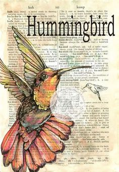 hummingbirds and Kristy | Hummingbird - print available for purchase at www.etsy.com/shop ...