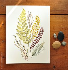 Plant mix no.2 by Evajuliet
