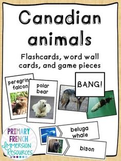 English - Canadian Animals - Flashcards, Word wall words, and game cards Game Cards, Card Games, Grade 2 Science, Canadian Animals, French Immersion, Game Pieces, Vocabulary, Playing Cards, Classroom
