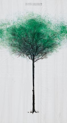 Jody Xiong of DDB China in conjunction with the China Environmental Protection Foundation created this wonderful outdoor campaign to create a subtle visual reminder of the environmental benefits of walking versus driving. Enormous white canvases with a bare tree were placed across 132