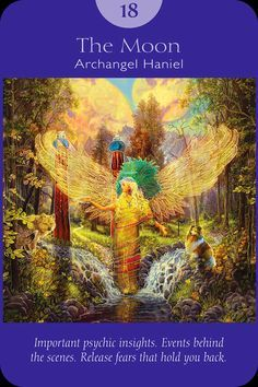 Your daily Angel guidance card for October 11, 2016.