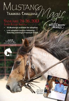 EXTREME MUSTANG MAKEOVER - EVENTS - fantastic horses!