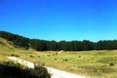 Il parco nazionale della Sila espone nel Lazio, a Roma, le sue bellezze e peculiarità