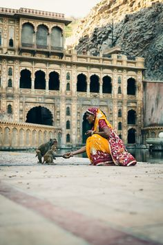 Hello. Welcome to my palace. King Midas will be very pleased..-- Galtaji, India, by Alex Robertson Photography