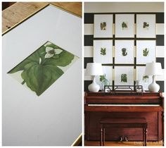 4 Beautiful Books To Gift & Frame (a botanical art gallery wall above our piano)