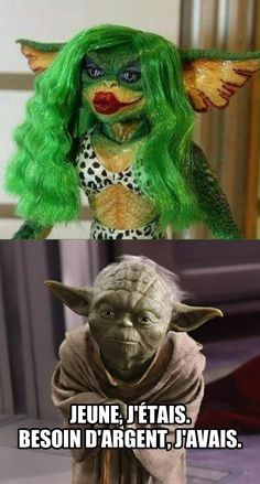 59 Ideas For Humor Quotes Memes Star Wars Stupid Funny, The Funny, Funny Jokes, Hilarious, Yoda Quotes Funny, Yoda Meme, Crazy Funny, Humor Quotes, Memes Humor