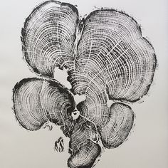 Original pieces of art. Not copies. by LintonArt on Etsy #lintonart #treeringprints #Treelovers #interiorart #hotelart #apartmenttherapy #Officedesign #giftsforhim #giftsforher #etsyseller
