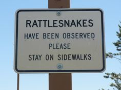 This sign is placed outside a rest area in northern Montana.  We kept our eyes open and walked fast to get in the building and then back to the van.
