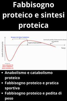 Quanti grammi di proteine andrebbero assunti ogni giorno? Qual è il fabbisogno proteico di uno sportivo? Quando è necessario introdurre proteine? Sono solo alcune delle domande che sportivi o persone attente all'alimentazione possono farsi riguardo al fabbisogno di proteine durante la giornata. In questo post cercheremo di rispondere a questi quesiti, partendo dai presupposti fisiologici che stanno alla base della sintesi proteica e riferendoci sempre alla letteratura scientifica… Running, Fitness, Sports, Biking, Diet, Hs Sports, Keep Running, Why I Run, Sport