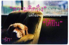 คำคมดีๆ - Thai Inspirational Quotes, Love Quotes, Funny Quotes, Life Quotes: ความคิดถึงมันไม่มีเสียง แต่ก็อยากให้ใครสักคนได้ยิน...