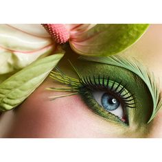 Green eye make up nature elements Free HD Wallpaper Beautiful Eye Makeup, Beautiful Eyes, Nice Makeup, Awesome Makeup, Beautiful Forest, Make Up Gesicht, Eyes Wallpaper, Makeup Wallpapers, Makeup For Green Eyes
