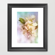 Buy apple blossoms by Christine baessler as a high quality Framed Art Print. Worldwide shipping available at Society6.com. Just one of millions of products available.