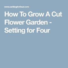 How To Grow A Cut Flower Garden - Setting for Four