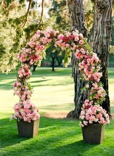 Arch flowers ~ Dreamy Nature