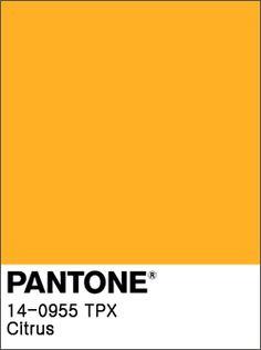 팬톤페인트 추천 블루 컬러 Top 3 – 은은한 블루페인트로 셀프인테리어 하기 : 네이버 블로그