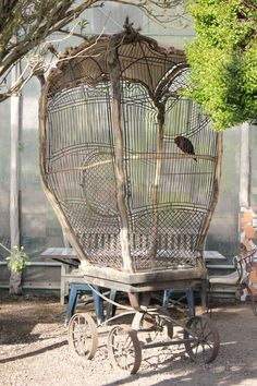 (such a pretty thing for freedom lost) antique wire bird cage on weels. antica gabbia per uccelli in fil di ferro voor brocante Cage Deco, Antique Bird Cages, The Caged Bird Sings, Deco Nature, Vintage Birds, Bird Feathers, Beautiful Birds, Bird Houses, Vintage Antiques