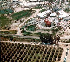 Vintage Disneyland: Love the orange groves!!!!