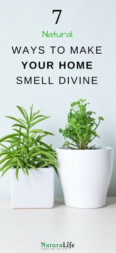 Store-bought air fresheners contain nasty chemicals that can cause infertility, nerve damage, and even birth defects. Here are some #natural #DIY air fresheners to make your home it smell amazing.