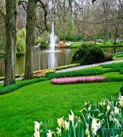 Keukenhof Spring Tulip Gardens Lisse The Netherlands Alison