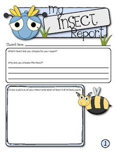 My Insect Report:  This 3-page report template is a great way to teach young children how to research and write in informative forms.