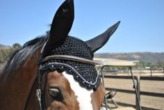 Horse fly bonnet black with rhinestones