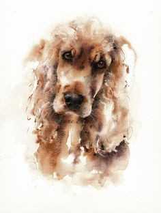 Pet portrait of a Cocker spaniel in watercolour by artist Jane Davies Animal Paintings, Animal Drawings, Watercolor Animals, Watercolor Paintings, Art Aquarelle, Watercolor Portraits, Dog Portraits, Dog Art, Animal Photography