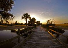 Sun setting on the McQueen's Island trail
